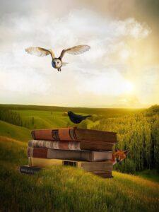 coruja-livros-corvo-e-lobo